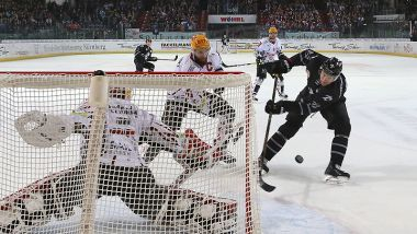 Game Report: Nürnberg Ice Tigers - Pinguins Bremerhaven