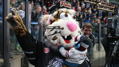 Game Report: Nürnberg Ice Tigers - Grizzlys Wolfsburg