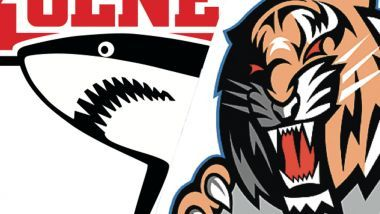 Game Report: Kölner Haie - Straubing Tigers